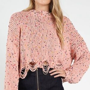 Wild Honey Distress Confetti Cropped Sweater